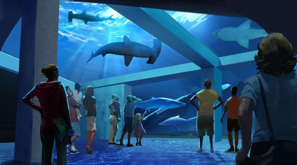 Expansion Overhead View_preview Georgia Aquarium
